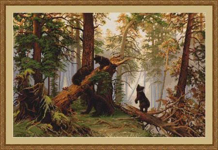 B452 Утро в сосновом лесу.